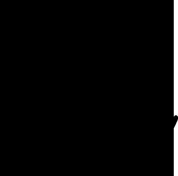fotografka eva holásková